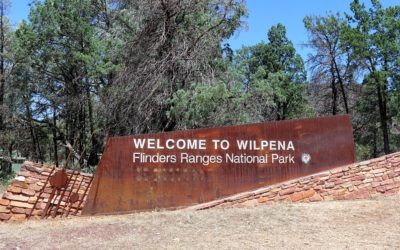 Driving the Long Way to Wilpena Pound