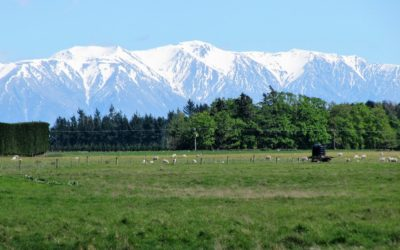 My Favourite Things about New Zealand