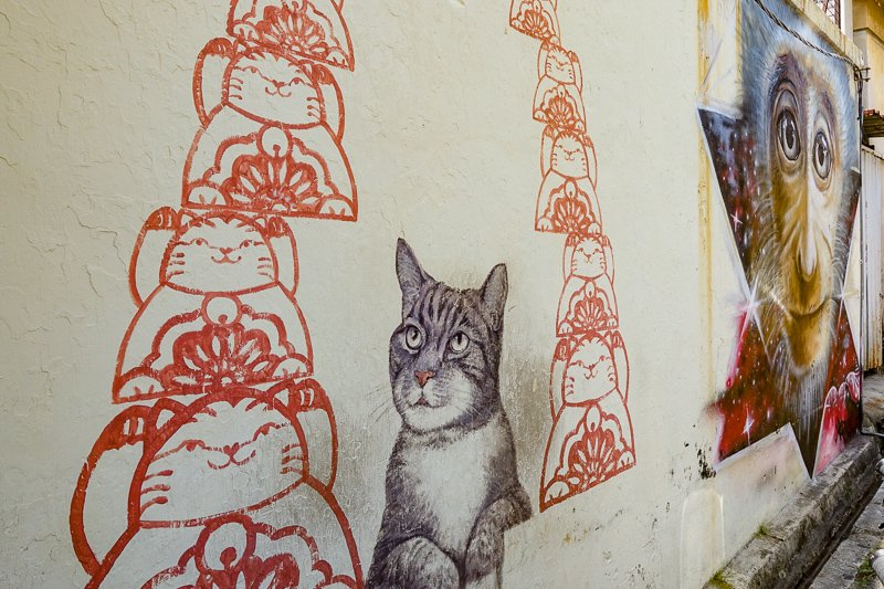 Penang street art, picture of cat, Malaysia