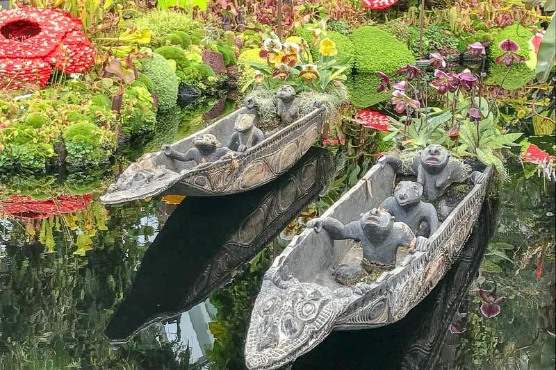Cloud Forest Boats