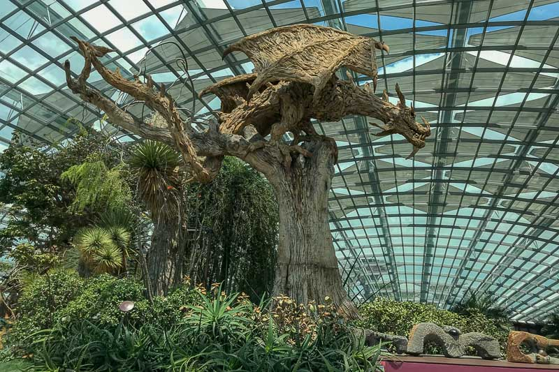 Flower Dome dragon