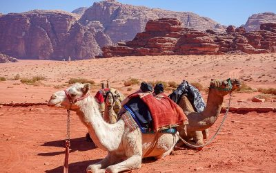 The Perfect Itinerary for 2 Weeks in Jordan