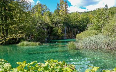 A Day Trip from Zadar to Plitviče Lakes National Park