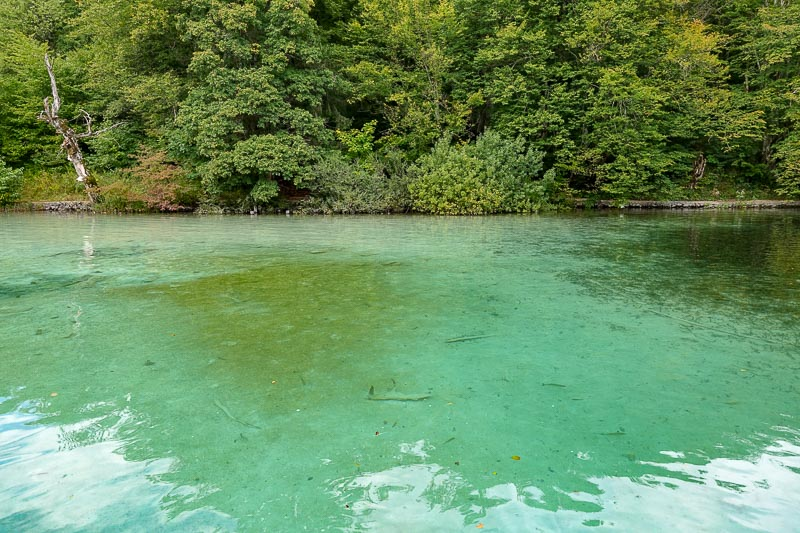Plitvice Lakes Clear Water