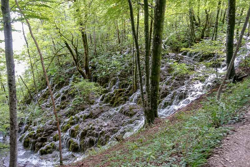 Plitvice Lakes Hillside