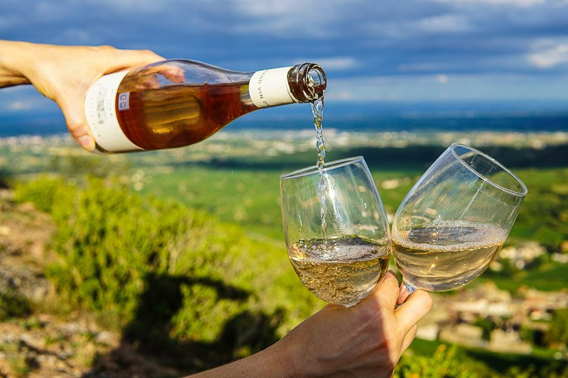 Best Adelaide Hills Wine Tours