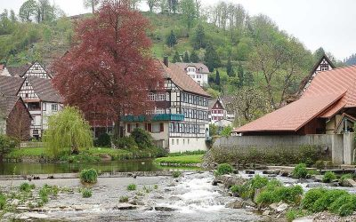Travel Diaries – the Black Forest