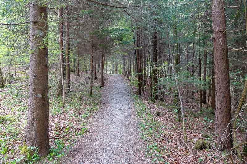 Alatsee Hiking Path