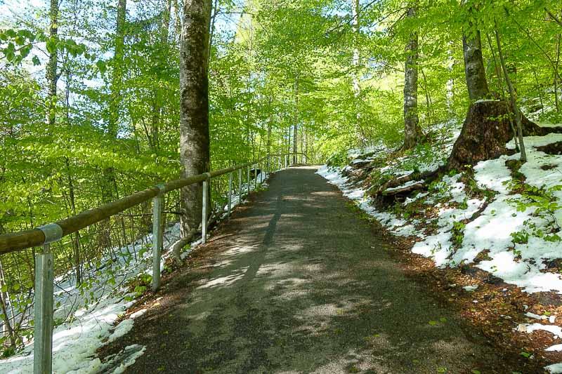 Path to Neuschwanstein