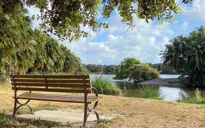Centennial Parklands – Best Park in Sydney